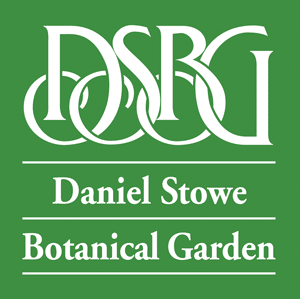 DSBG Logo White On Green